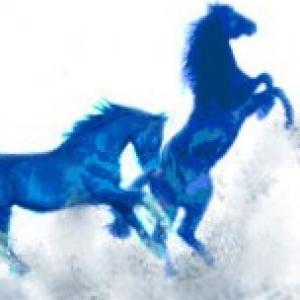 mustang monochrome blue design